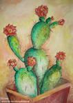 Un cactus by Lee-ana