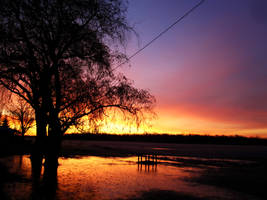 Sun Rising by RaindropsOnRoses21