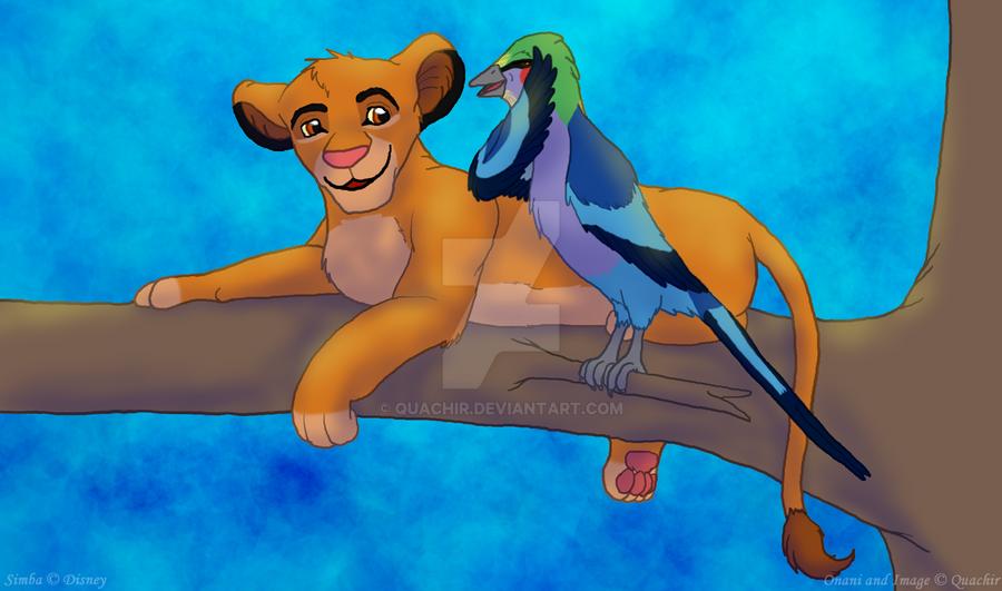 You would not believe, Simba by Quachir