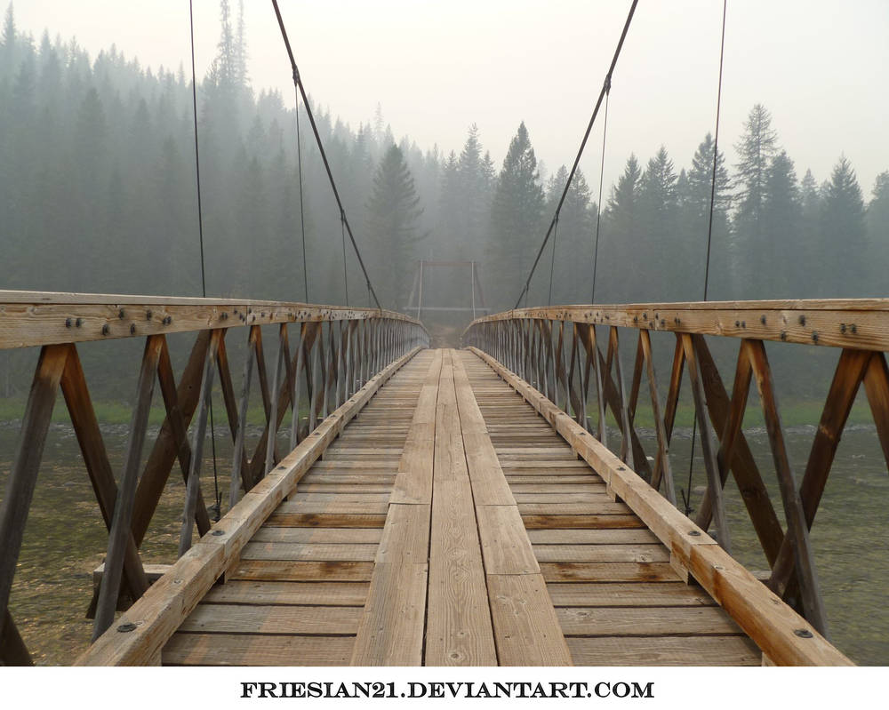 Bridge by friesian21