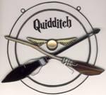 quidditch by toroj