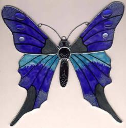 butterfly by toroj
