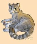 Cintiq Kitty by qoldylocks