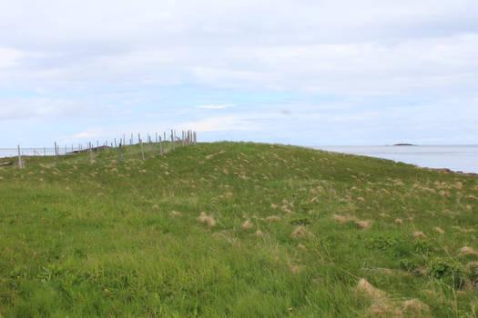 Norwegian grassland STOCK