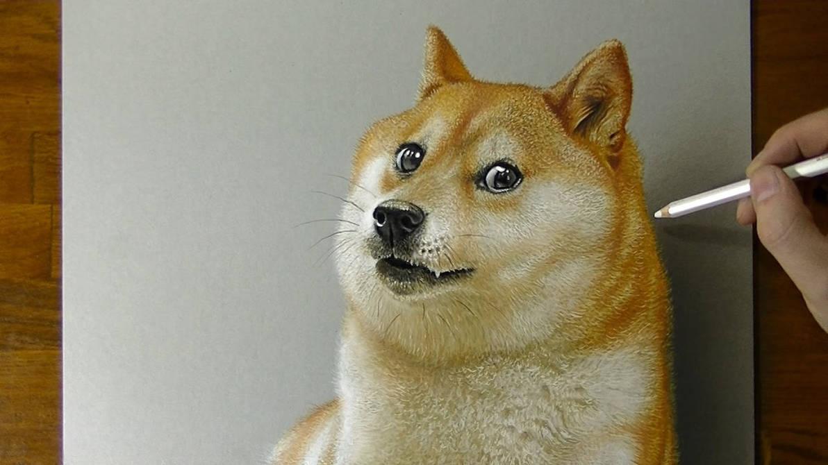 Doge Meme Dog By Derek121art On Deviantart