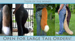 Open for 3 Large Tail Commissions by TigeroftheWinds