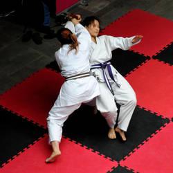 Jiu Jitsu 2 by rorshach13