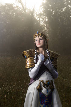 Princess Zelda Cosplay 2