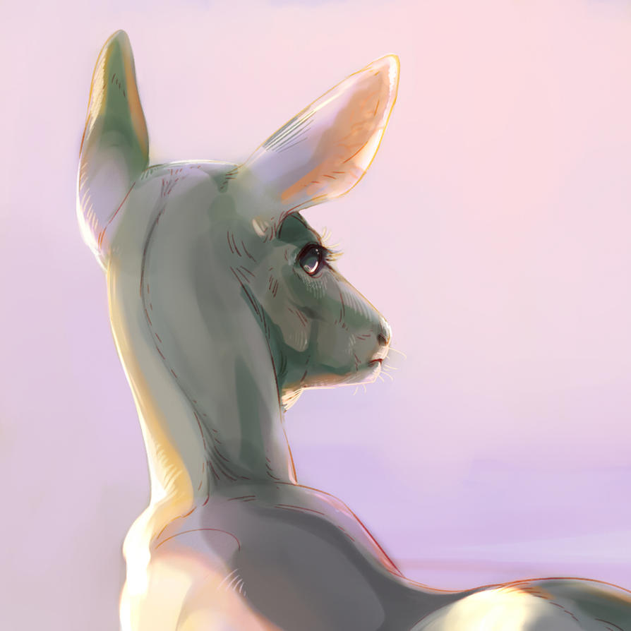 But a lamb by ImperfectEnthusiast