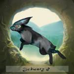 [Flitbun Character Sheet] Schwarz