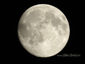Moon 7-29-15 by debzdezigns-lamb68