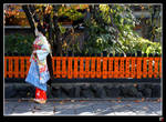 Maiko in the Fall