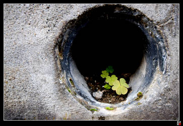 Nature in a Hole