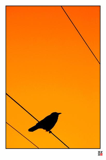 crow tripple wire by tensai-riot