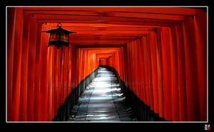 Fushimi Path 2