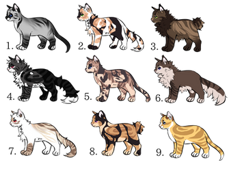 Cat Auction || OPEN || by Angelpaw33