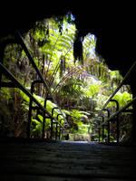 Hawaii - 002 by ThePancakey