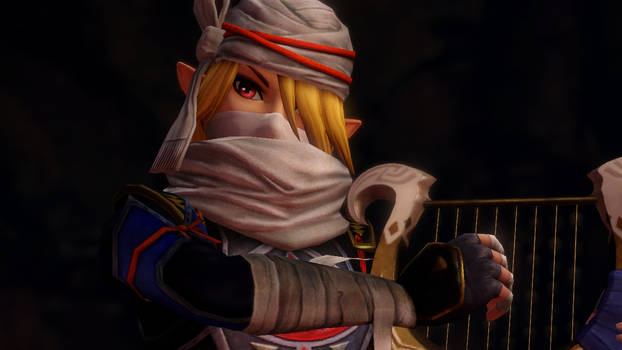 Hyrule Warriors Sheik