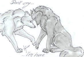 Don't Cry by Thyria