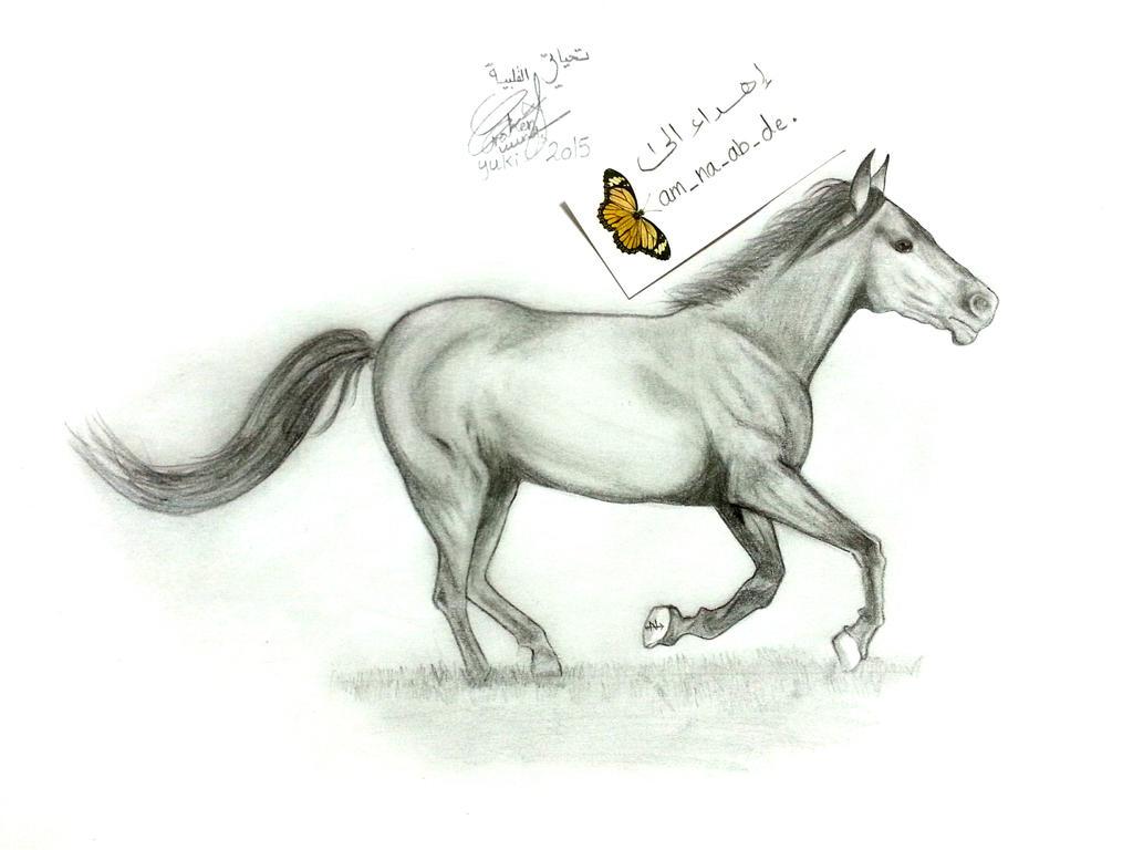 horse by NoNoyuki