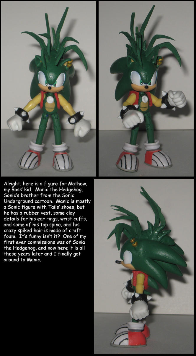 Custom Commission: Manic the Hedgehog by Wakeangel2001