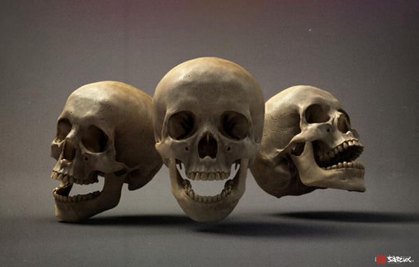 Skull study, wip 03 by shtl