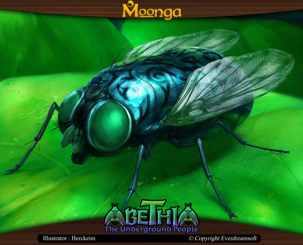 Moonga - Fly
