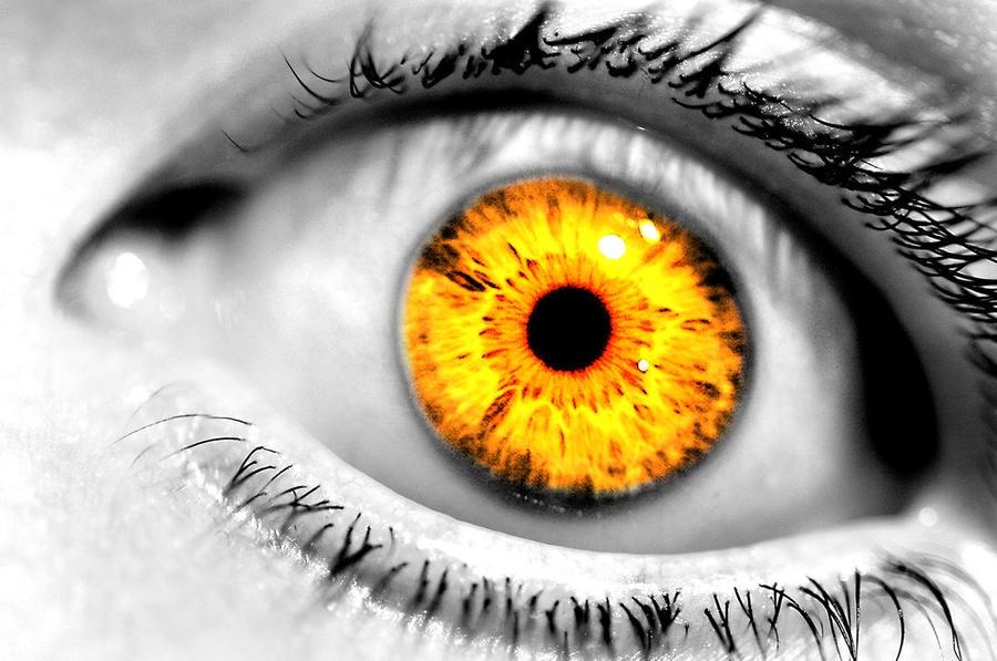 yellow eyes - photo #20