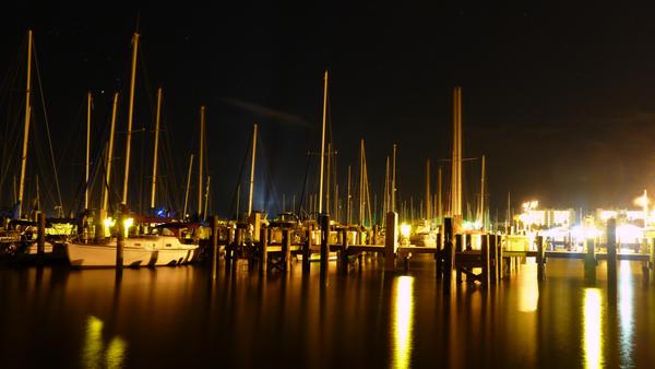 Discovery at the Marina
