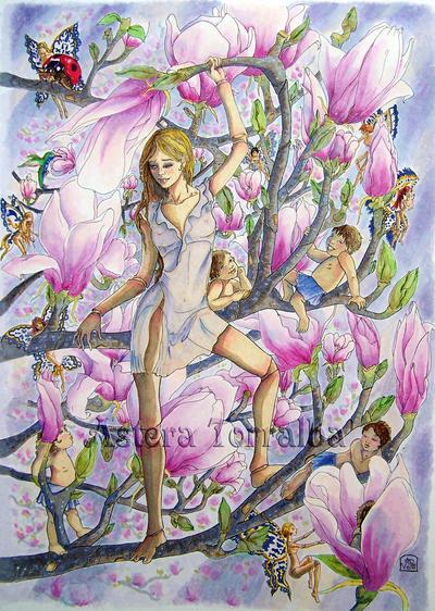 Lady Magnolia