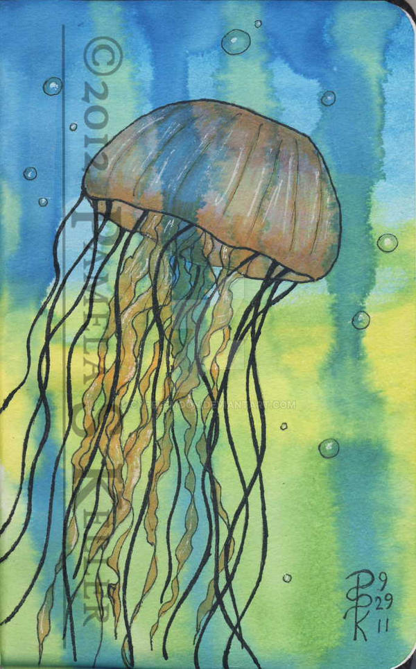Adventures of a Jellyfish