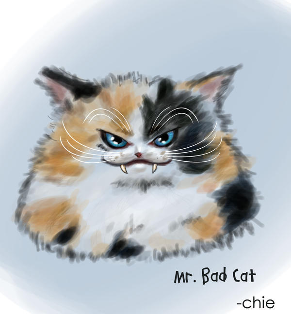 Bad kitty :D