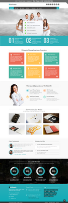 Ultimate WP Business Theme