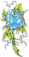 Blue Rose 3