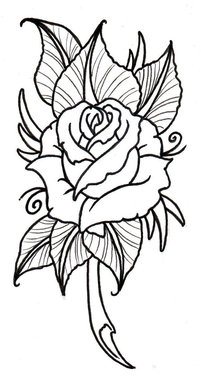 Neo traditional rose outline by vikingtattoo on deviantart for Neo traditional rose tattoo