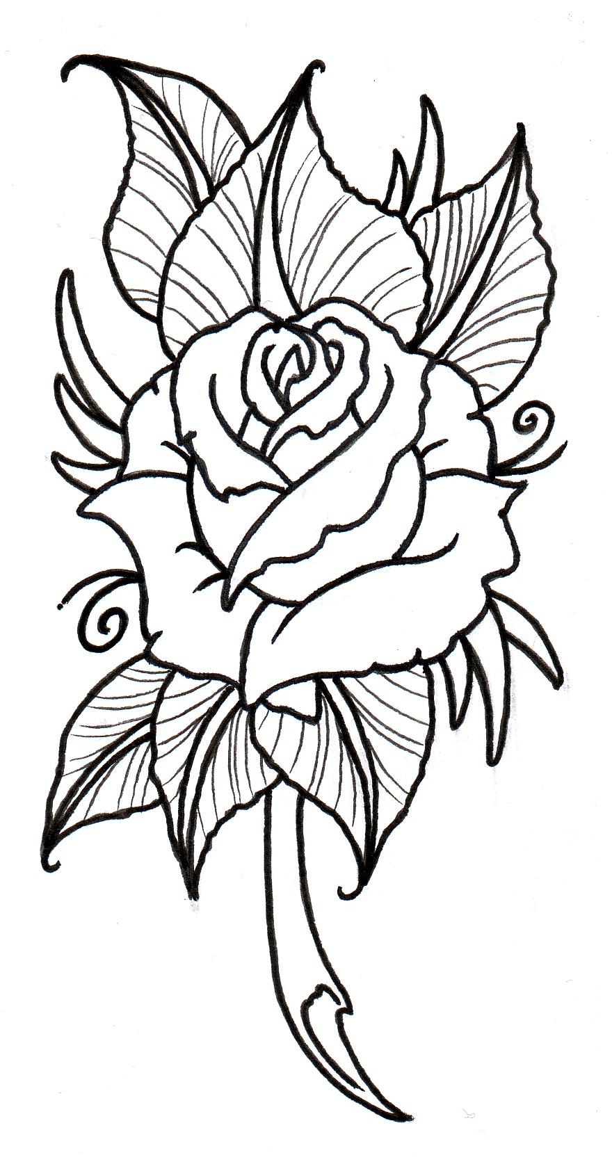 Tattoo Outline: Neo Traditional Rose Outline By Vikingtattoo On DeviantArt