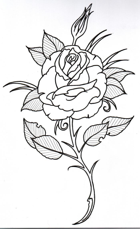 Rose outline 3 by vikingtattoo on deviantart for Rose outline tattoo