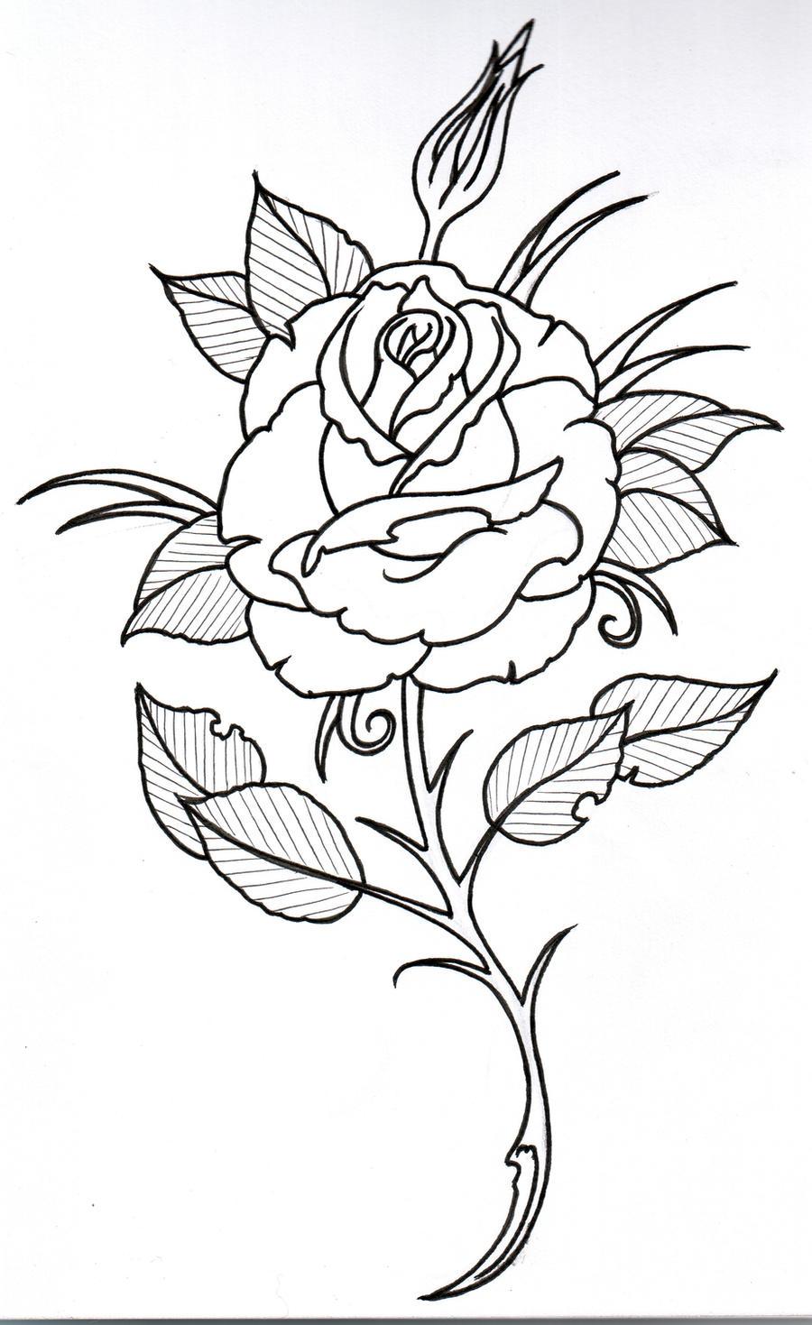 Rose Outline 3 by vikingtattoo on DeviantArt