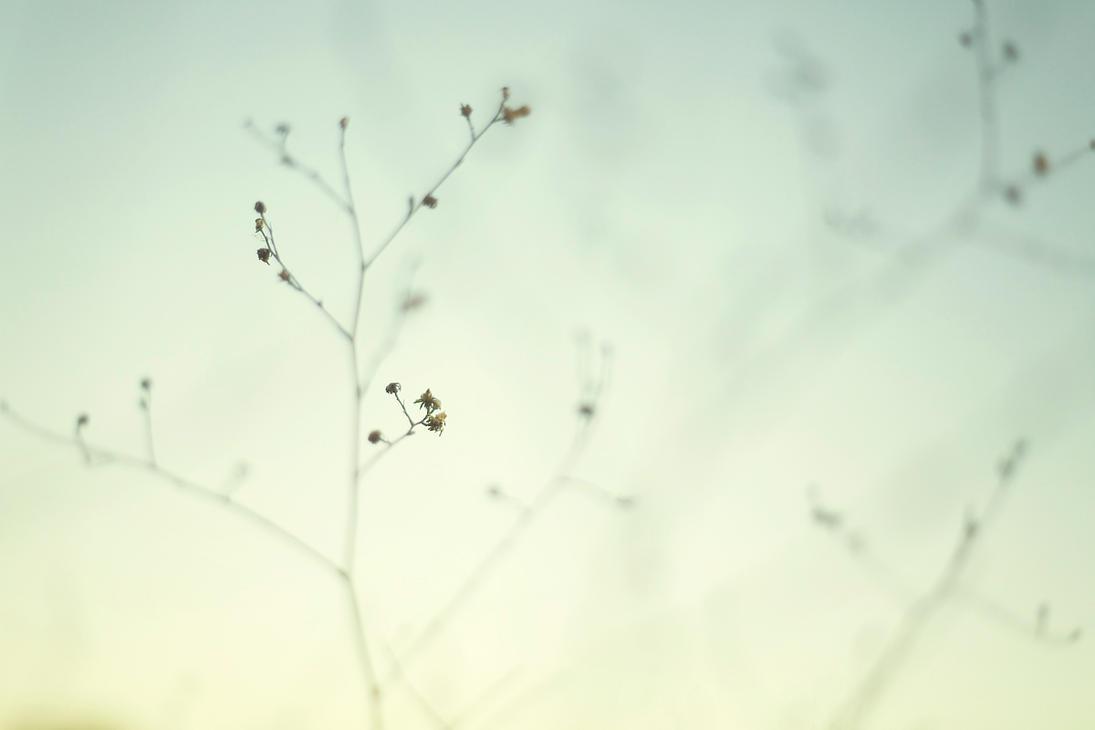 minimalism by nerdynotdirty