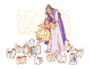 assorted pups