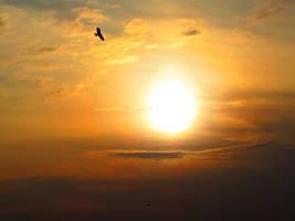 Sunset Sky by onlyasim