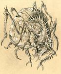 Cursed Spider