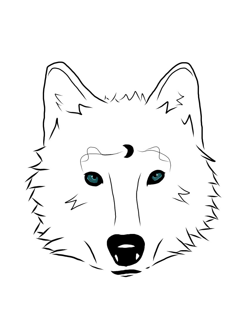 how to draw simple wolf looking at you