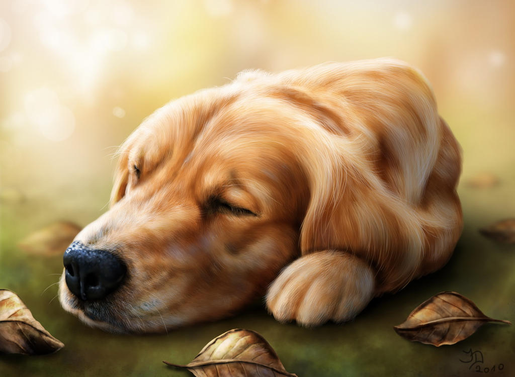 Lazy Autumn Days by Pixx-73