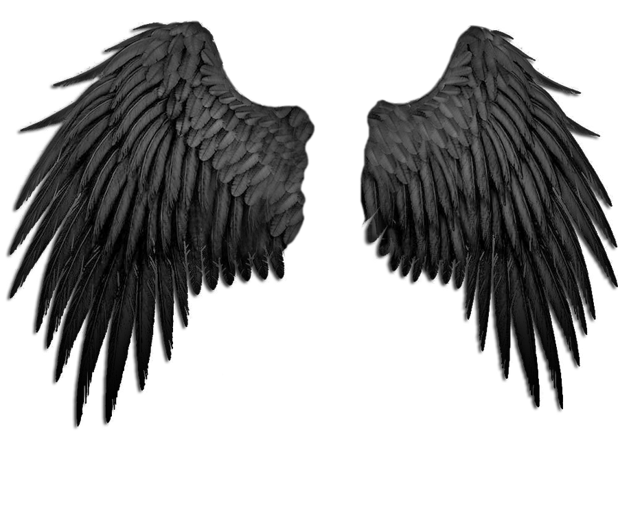 angel wings black background - photo #41