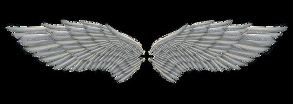 Angel Wings 01 By Marioara08 On Deviantart