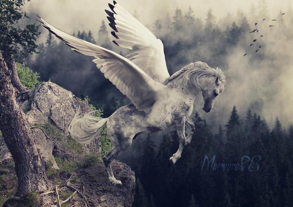 Silver pegasus by Marioara08