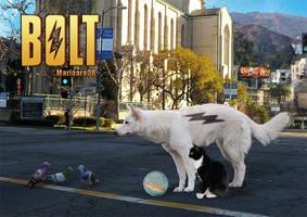 grown Bolt