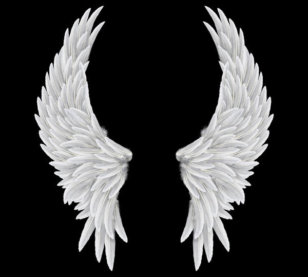 angel wings 04 by Marioara08