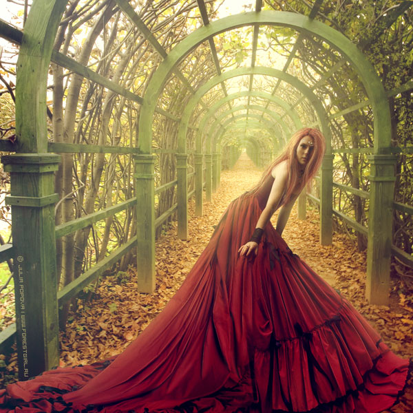 the undivided by forestgirl d2gdbj2 - ~ Avatar [ HazaL ]